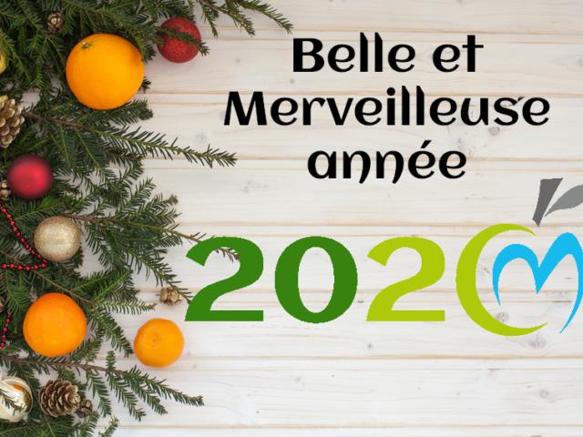 Bonne année 2020 Cécile Michaud diététicienne nutritionniste