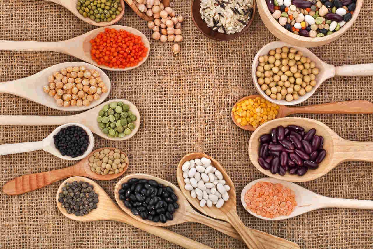 recettes-légumineuses-lentilles-grains-cecile-michaud-nutritionniste-rodez-1280x853.jpg