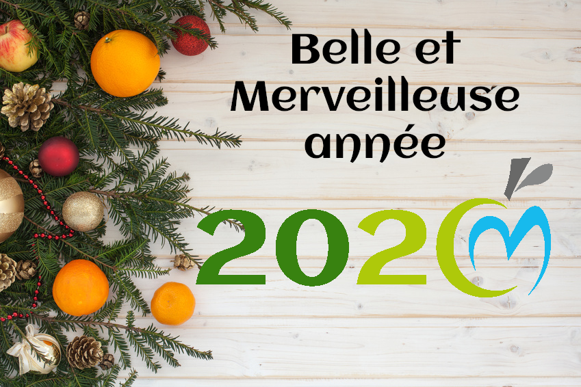 voeux-2020-cecile-michaud-dieteticienne.png